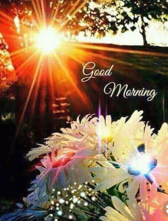 Good Morning Wallpapers New October 20 2020 Pictures Images Photos