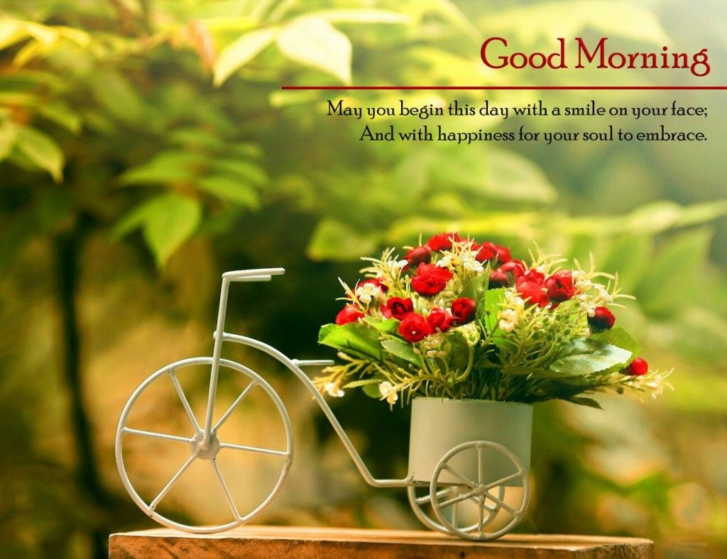 Good Morning Photos Download Free Hd Whatsapp Sms Wallpapers - Hdwallpaperstoke
