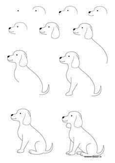 Kids Drawing Dogs Drawing Simple Dog Drawing Drawing Step Easy Dog Drawing Simple Drawing 2021