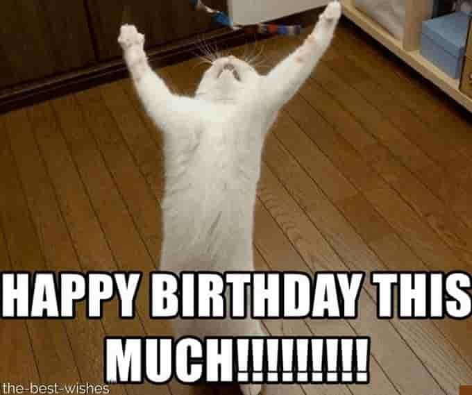 16+ HILARIOUS HAPPY BIRTHDAY MEMES (Most Popular)