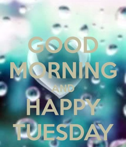 Good Morning Tuesday Pictures {429x500*} HD Free Download