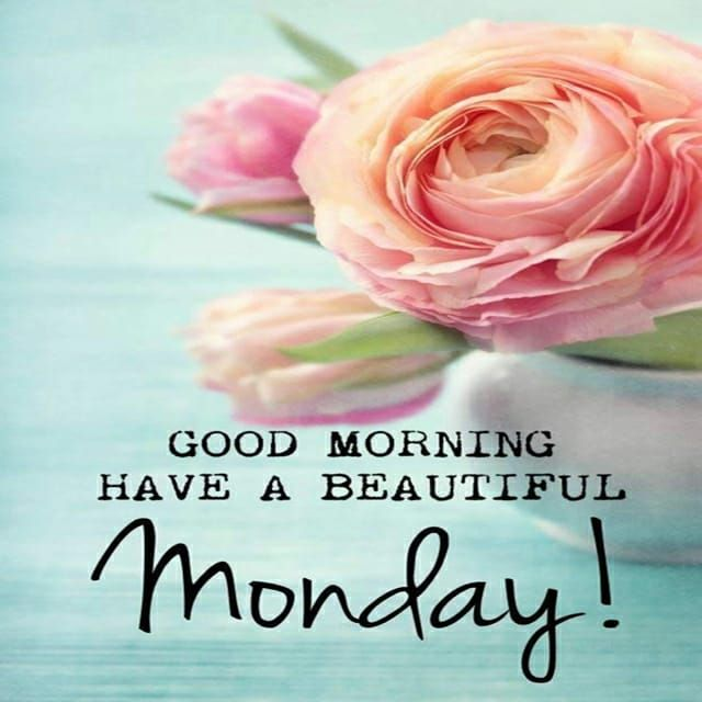 12+ Beautiful Free Good Morning Images Free Download &Amp; Share