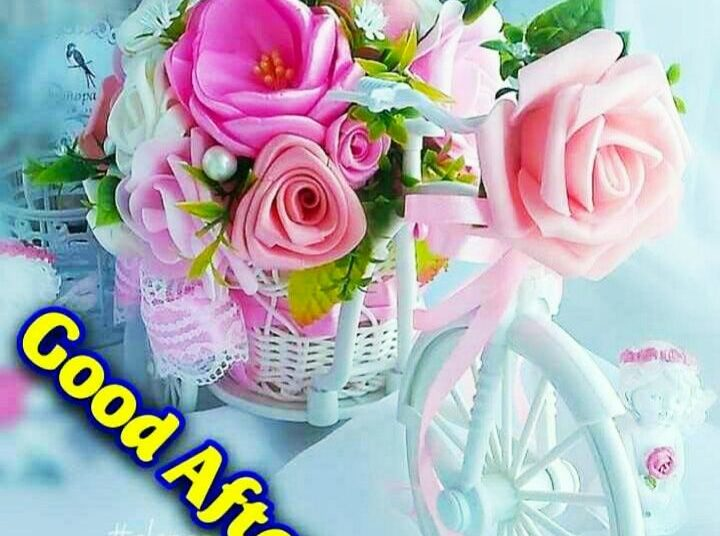 Good Afternoon Images For Whatsapp, Free Download Hd Wallpaper, Pictures, Photos Of Good Afternoon, Good Afternoon Shayari