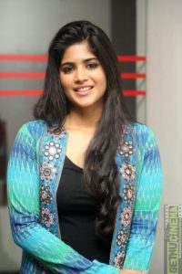 LIE Movie Success Meet Gallery | Megha Akash, Arjun Sarja - Gethu Cinema