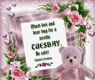 Bear Hug For A Terrific Tuesday
