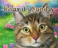 Cat &Amp; Mouse - It'S Sunday Gif