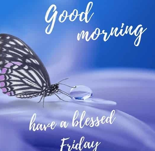 Download 30 &Quot;Good Morning Friday Images&Quot;