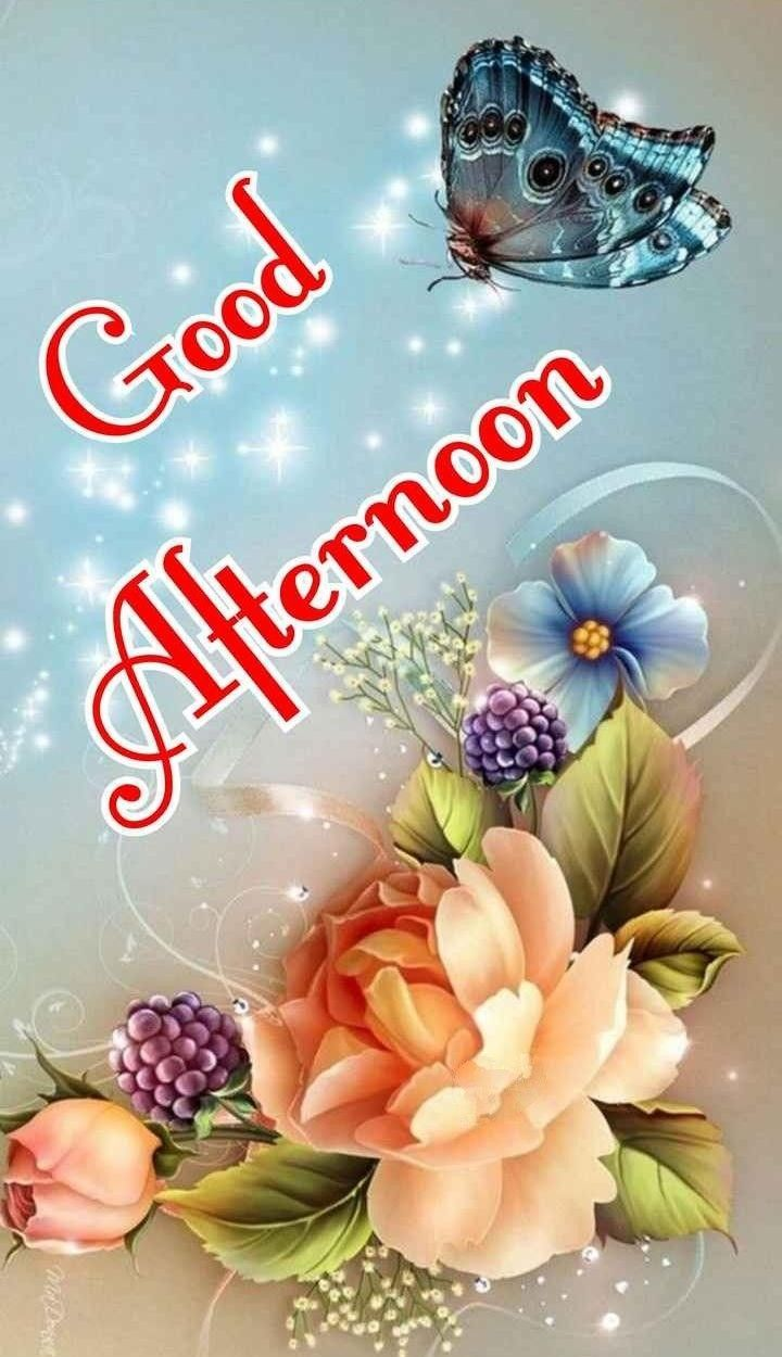 Good Afternoon Flowers &Amp; Butterfly Images 1080P Hd