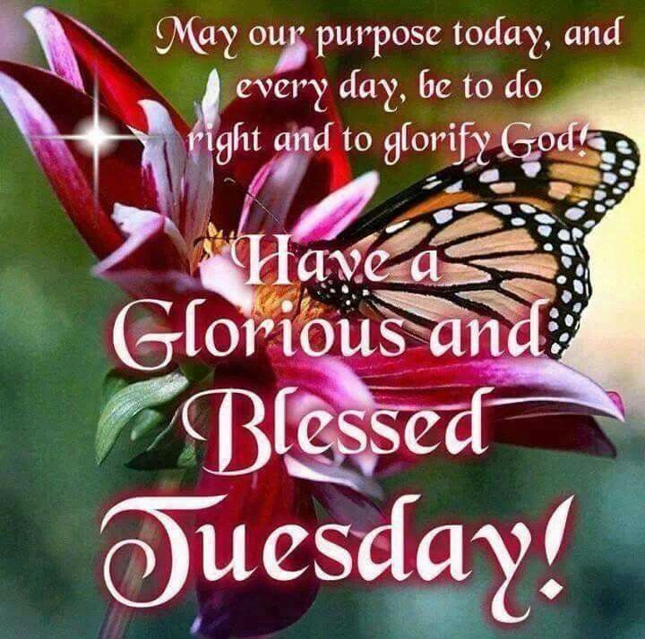 Have A Glorious And Blessed Tuesday!