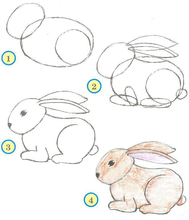 Drawing Ideas For Beginners Step By Step - Animals / How To Draw. Painting And Drawing For Kids