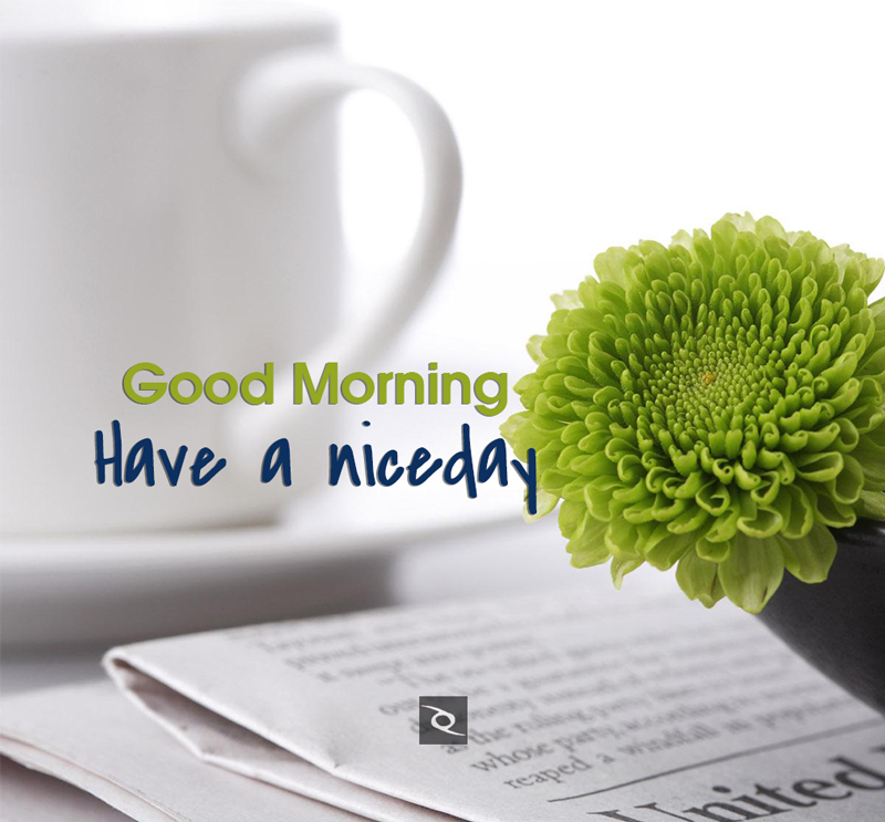 45+Good Morning Images Hd Download