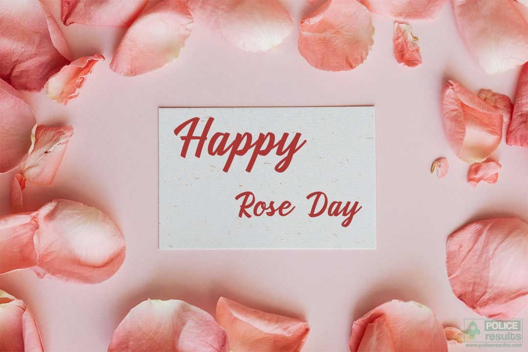 [7 Feb] Happy Rose Day: Wishes, Images, Quotes, Pic, Shayari, Status For My Love