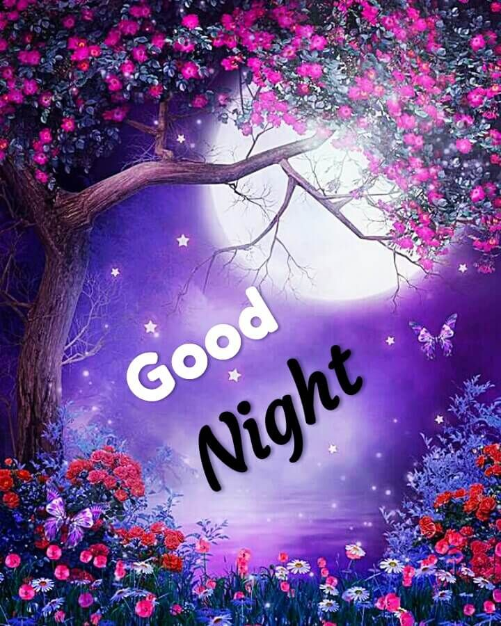 Best 20+ Good Night Images For Whatsapp, Free Download Hd Wallpaper, Pictures, Photos Of Good Night &Amp; Poetry