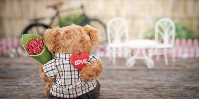 Download Teddy Day Images &Amp; Wallpapers - - Bollywood, Cricket, Travel, Recipes &Amp; More