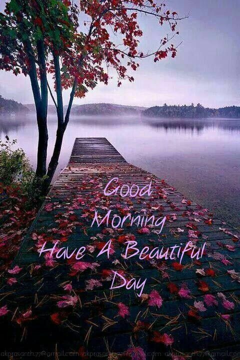 Good Morning. I Hope You Have An Awesome Day, Just Like You Are To Me.