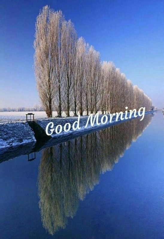 Beautiful Good Morning Wallpapers (548x800) Free Download
