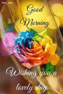 Best Good Morning Wishes For Whatsapp, Facebook & Instagram