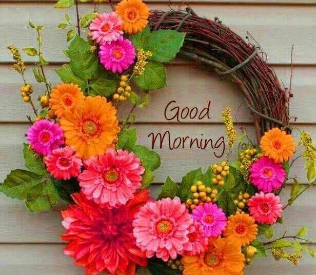 Good Morning Whatsapp Images With Flowers Free Download