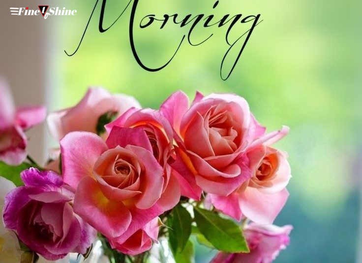 10 Good Morning Wishes To Start A Fresh New Day