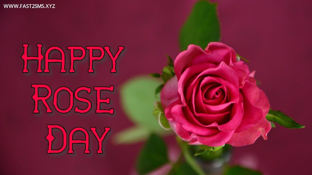 Happy Rose Day Pic With Name, Rose Day Images Video By Fast2Smsxyz