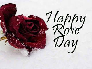Rose Day - Images, Pics, Pictures, Photos And Wallpapers