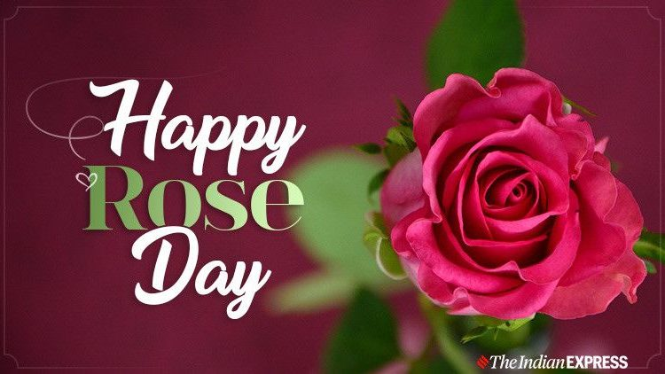 Rose Day -: Wishes Images, Quotes, Status, Wallpapers, Greetings Card, Photos, Pictures