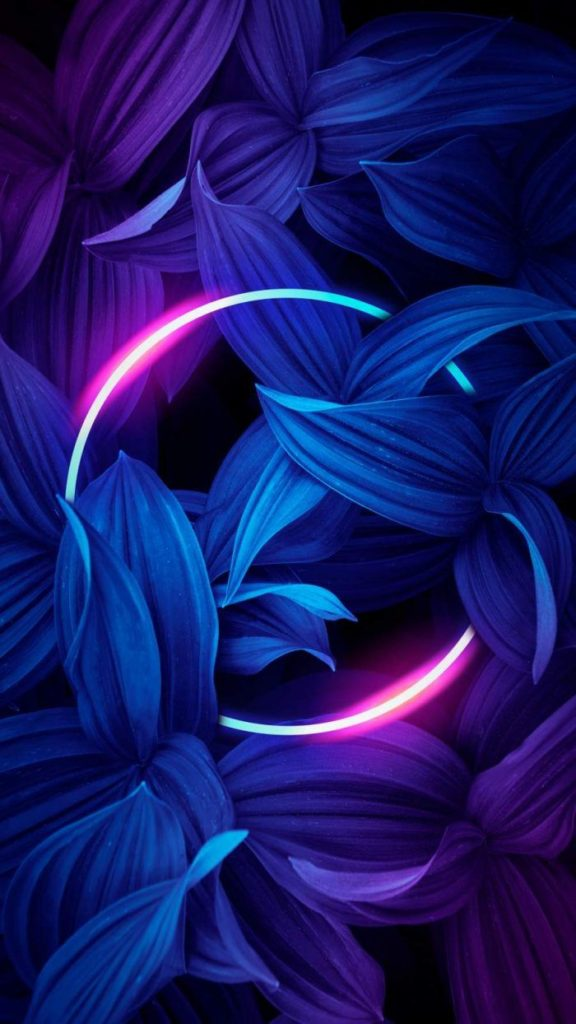 Oppo Find X3 Neo Wallpapers