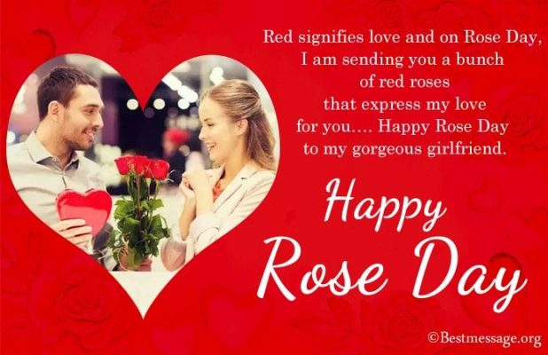 Happy Rose Day Messages 2021: Romantic Rose Day Wishes, Quotes,